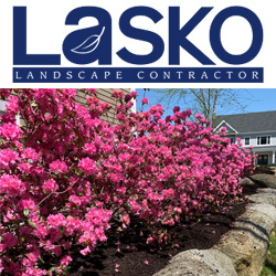 Lasko Landscaping & Irrigation Website