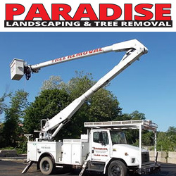 Paradise Landscaping & Tree Removal Website
